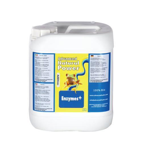 植物活力剤 肥料Enzymes+ エンジメスプラス 5L