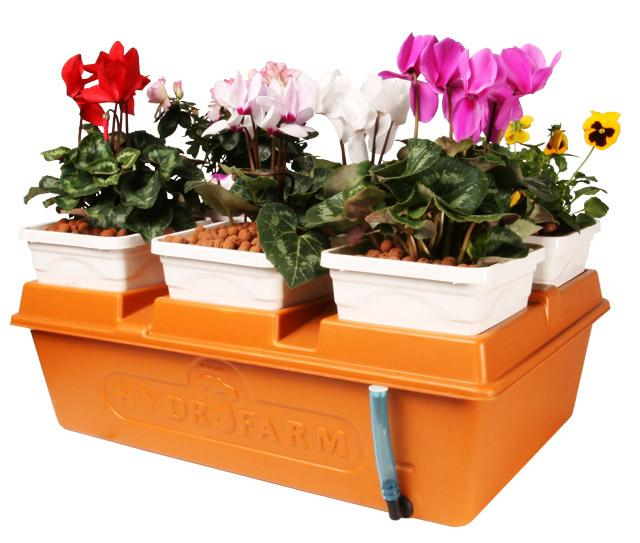 LEDも使える 水耕栽培 キット エアレーションシステム エネミーズガーデン