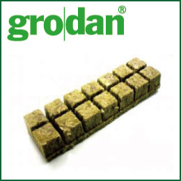 Hydroponic cultivation Rockwool cultivation! The germination of plants or cuttings, to the role of the soil! grodan Refill Cubes-S [hydroponic cultivation sponge gardening materials gardening plants seedlings of grodan