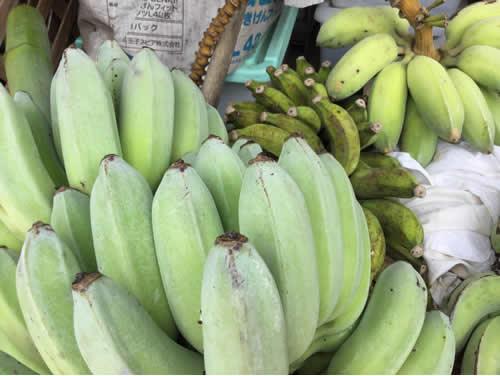 新発売 送料無料沖縄県 中城村産 農薬・除草剤等 一切不使用、無施肥 稲福さんの各種バナナ 約2kg(アイスクリームバナナあります)(お選びください 各約2kg、5kg、10kg)【平年発送期間 5月中旬~11月頃】【配達日ご指定不可】