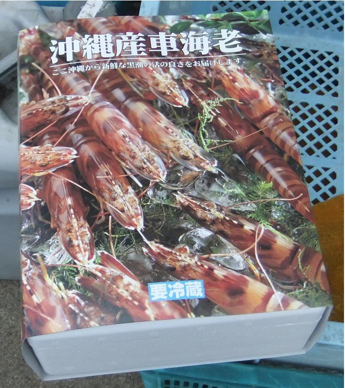 【送料無料】沖縄勝連の活くるま海老1kg(40~45本)【発送 11月上旬頃~2月末頃】