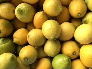 国産 レモン れもん クエン酸 食事療法 果汁 <BR>化学農薬 化学肥料 除草剤 殺虫剤 防腐剤 ワックス等一切不使用 樹の上に格上のレモンあり! 瀬戸田の有機肥料栽培 A級レモン約3kg(約30個前後)<BR>発送 9月下旬頃~12月上旬頃グリーン、12月中旬頃~4月末頃イエロー