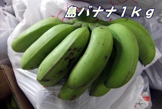 バナナだけどバナナではない味 産地直送 国産 稀少 <BR>沖縄産・島バナナ 約2kg【発送期間:5月中旬頃~11月上旬頃】※配達日ご指定不可【沖縄産 フルーツ 果物 貴重品 珍しい お取り寄せ】※2019年は早くても6月下旬から、7月半ばからは順調に出荷できる予定