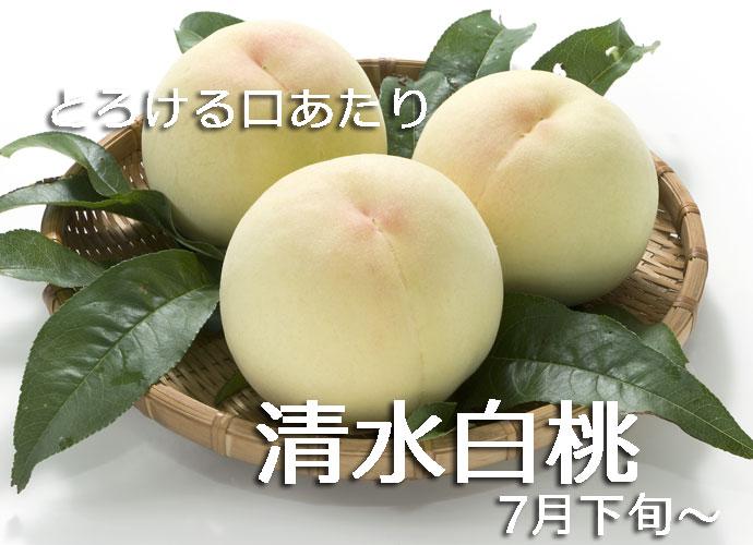 【2020年完売】和歌山 あら川の桃 減農薬栽培 清水白桃(最高級)4Lサイズ 約4kg(約13玉)【発送:7月下旬頃~ 8月上旬頃】※産地直送
