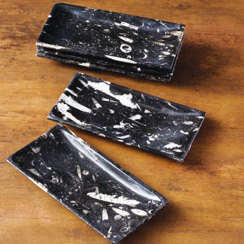 『オルソセラス万能トレイ』5枚1組【化石・皿・食器】【通販・販売】