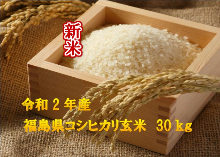 【新米】福島県産コシヒカリ玄米30キロ(玄米・2年産) 小分け 10kg精米不可 こしひかり ふくしまプライド 送料込 ギフト のし対応 30kg 贈答用