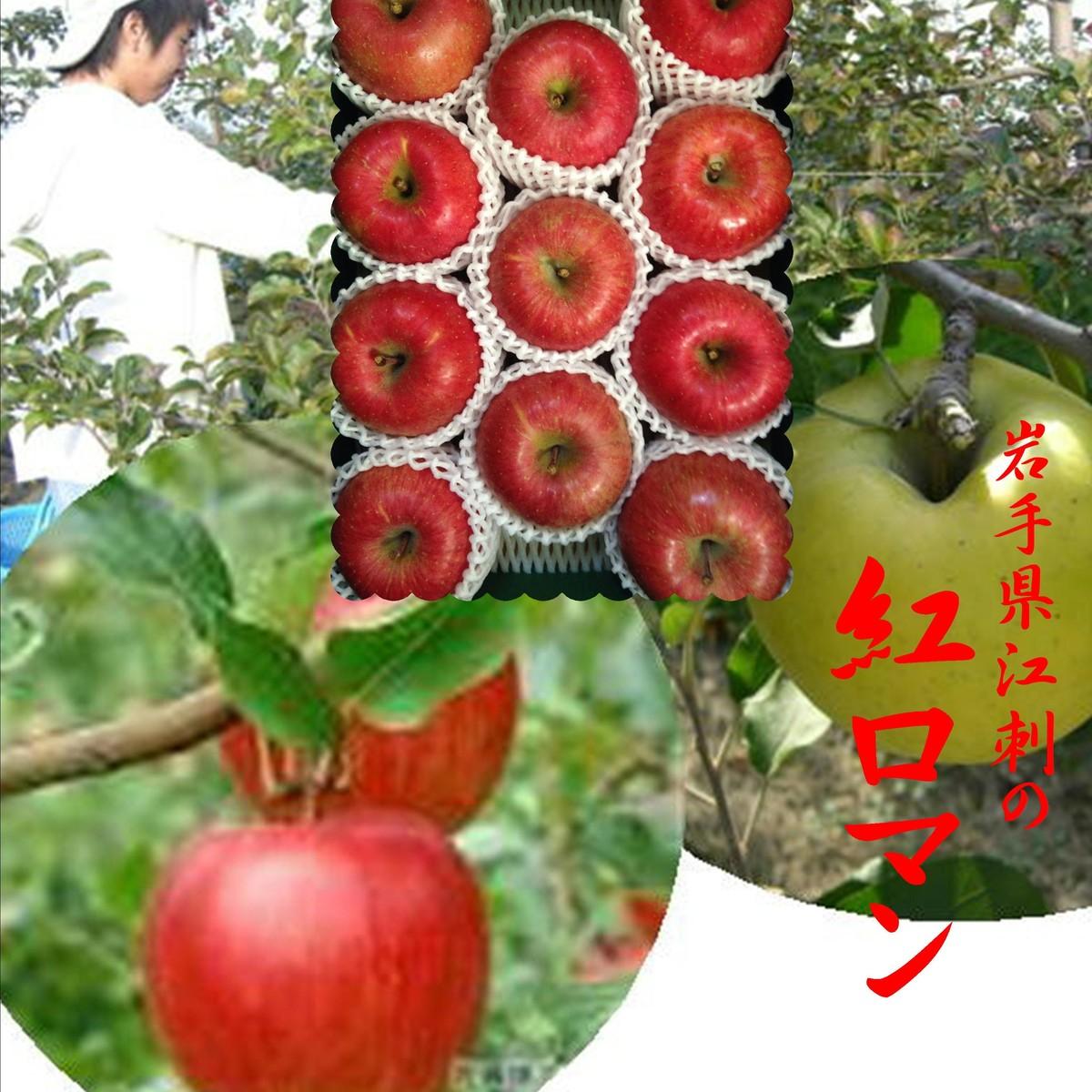 高品質りんごとして名高い岩手県江刺のりんご より完熟の味わいを引き出した栽培法 紅シリーズ 江刺の紅ロマン 1箱2.5kg 8~10玉 購買 時間指定不可 進物用