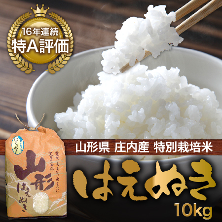 【送料無料】【山形県庄内産】特別栽培米 はえぬき10kg【smtb-k】【kb】