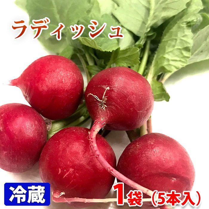 直営店 生食に向くミニ大根 愛知県産 日本全国 送料無料 5本入りパック ラディッシュ