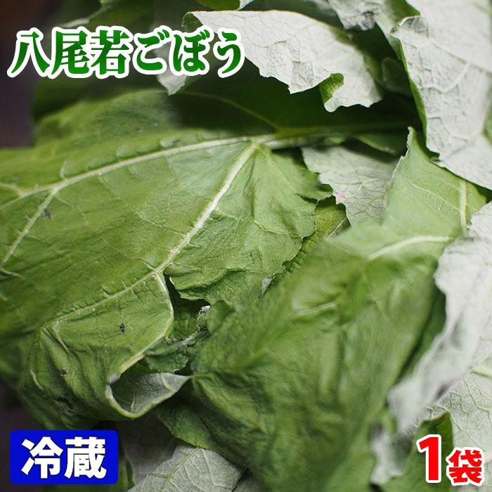 葉ごぼうの代表的な品種の一つ 大阪府産 八尾若ごぼう 1束 世界の人気ブランド ブランド買うならブランドオフ 約400gパック