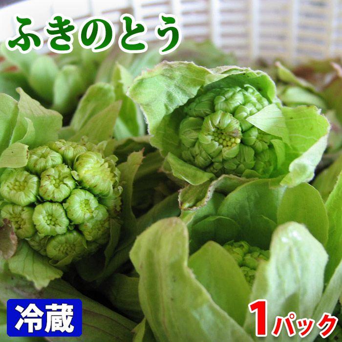 油との相性が良い春野菜 即納最大半額 秋田県産 100gパック ふきのとう 新発売