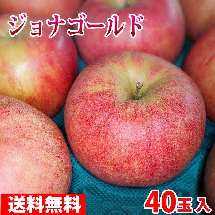 【送料無料】青森県産 りんご ジョナゴールド 40玉サイズ 10kg(CA貯蔵)