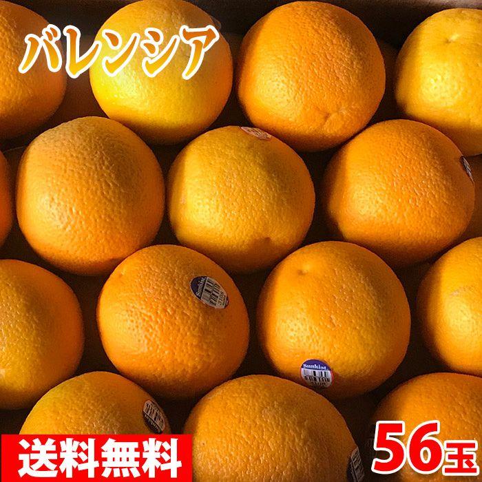 送料無料 アメリカ産 バレンシアオレンジ 56玉(箱)
