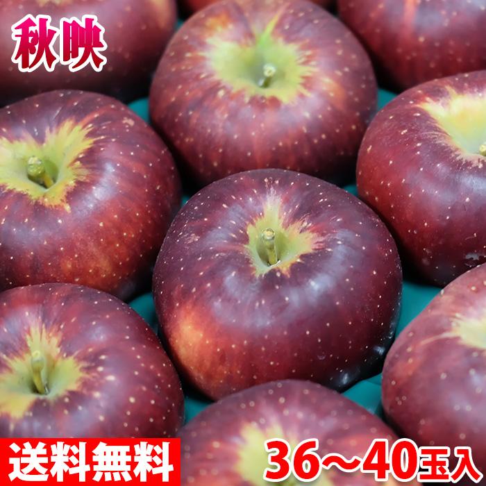 【送料無料】長野県産りんご 秋映え 秀品 36~40玉 10kg(箱)
