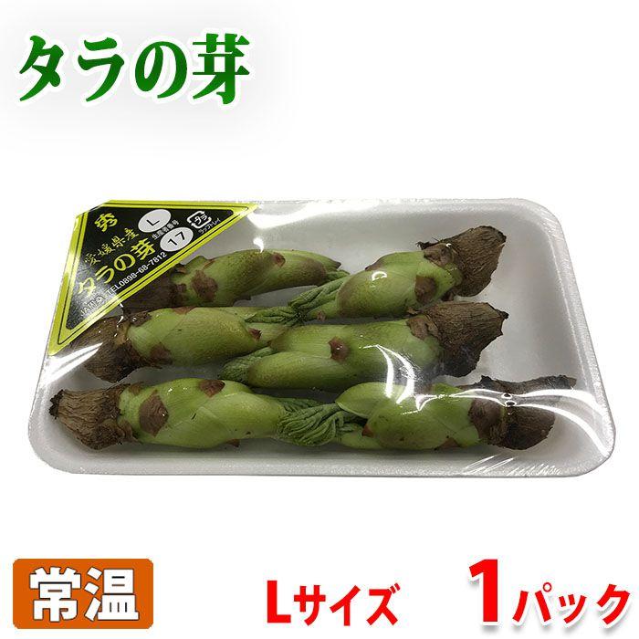 春の定番山菜 愛媛県産 卓出 タラの芽 Lサイズ 新作通販 1パック 約50g