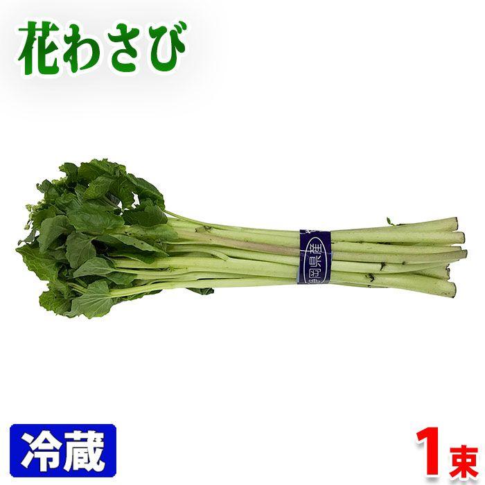 おトク わさび漬けに 静岡県産 セールSALE%OFF 花わさび 約100g 1束
