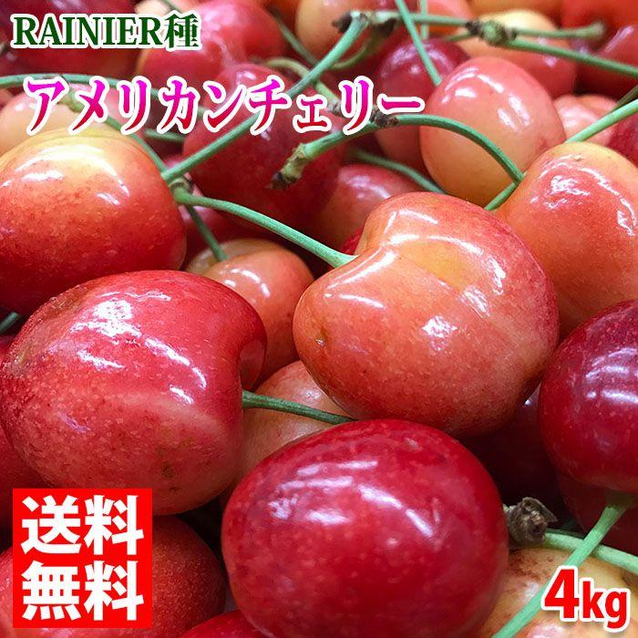 【送料無料】アメリカ産 アメリカンチェリー RAINIER(レイニア)種 4kg
