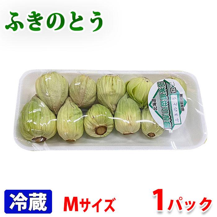 油との相性が良い春の山菜 北海道産 アウトレットセール 特集 100gパック 売却 ふきのとう