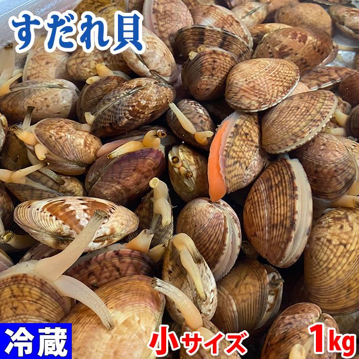 愛知県産 ギフト すだれ貝 姫貝 40~50個前後 購入 約1kg