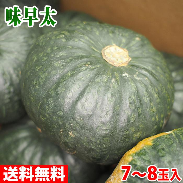 かぼちゃの極早生品種 【送料無料】北海道産 なよろ南瓜 味早太 7~8玉入 10kg
