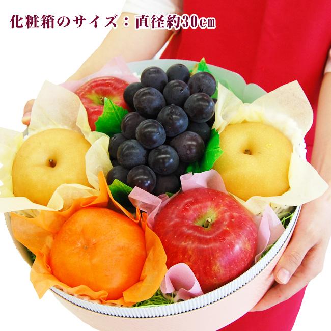 Autumn fruit ASSORTMENT