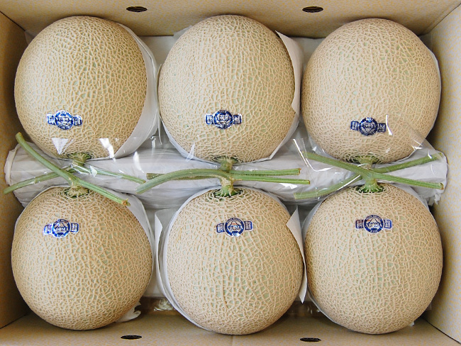 Six dainty food Japan -Discover Gourmet Japan - cantaloupe big balls from Shizuoka