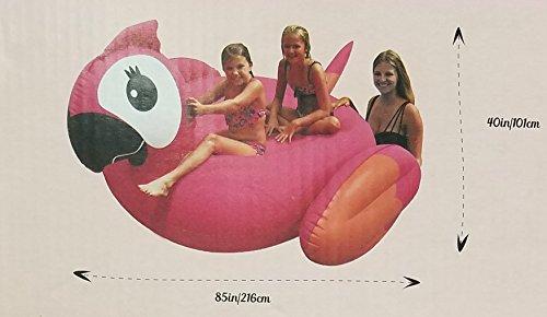 フロート プール 水遊び 浮き輪 IT'S HUGE Inflatable Parrot Swimming Pools Swim Floatation Deviceフロート プール 水遊び 浮き輪