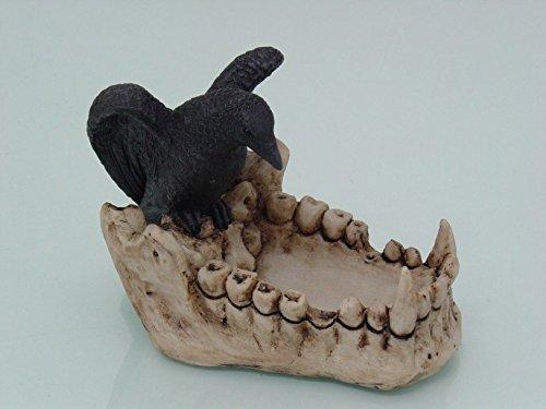 灰皿 海外モデル アメリカ 輸入物 【送料無料】PTC 6 Inch Raven in Skull Hand Painted Resin and Cold Cast Ashtray, Multi灰皿 海外モデル アメリカ 輸入物