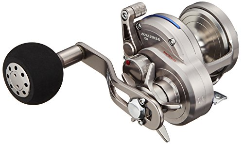 リール Daiwa ダイワ 釣り道具 フィッシング SASD10HL Daiwa SASD10HL Saltiga Star Test Seaborg Megatwin 2SPD Power Assist Fishing Reel, 12-20 lb, Silverリール Daiwa ダイワ 釣り道具 フィッシング SASD10HL