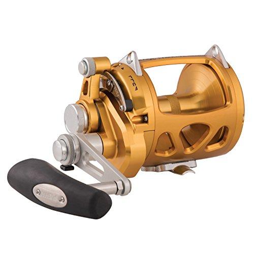 リール ペン Penn 釣り道具 フィッシング INT30VISW PENN International VIS 2 Speed Reelリール ペン Penn 釣り道具 フィッシング INT30VISW