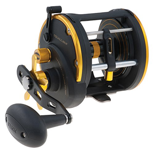 リール ペン Penn 釣り道具 フィッシング Penn Squall Levelwind Reel 20, LC, Box 1292942リール ペン Penn 釣り道具 フィッシング