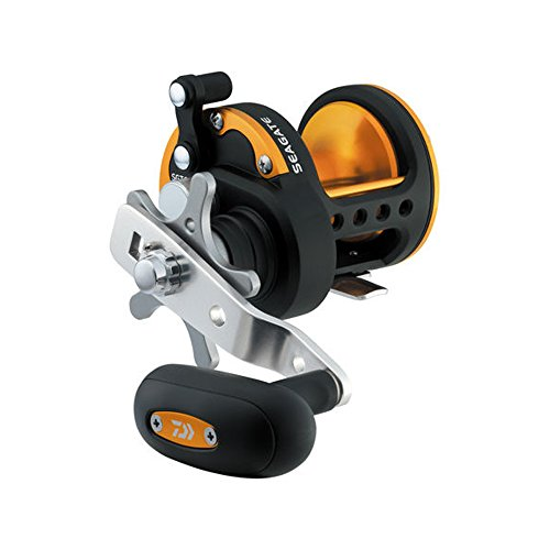 リール Daiwa ダイワ 釣り道具 フィッシング SGT30H Daiwa SGT30H Seagate Star Drag Saltwater Reel, 30, 6.1: Gear Ratio, 6CRBB, 1RB Bearings, 15.40 lb Max Drag, Right Handリール Daiwa ダイワ 釣り道具 フィッシング SGT30H