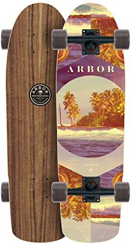 アーバー ロングスケートボード スケボー 海外モデル アメリカ直輸入 【送料無料】Arbor Pilsner Walnut 2017 Complete Mini Longboard Skateboard Newアーバー ロングスケートボード スケボー 海外モデル アメリカ直輸入