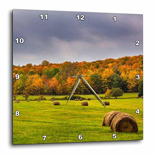 壁掛け時計 インテリア 海外モデル アメリカ 輸入 3dRose Danita Delimont - Agriculture - Hay bales in autumn meadow near Bruce Crossing, Michigan USA - 15x15 Wall Clock (dpp_279088_3)壁掛け時計 インテリア 海外モデル アメリカ 輸入