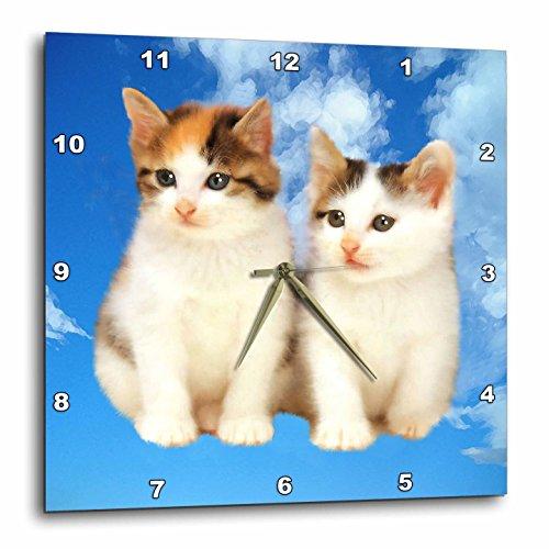 壁掛け時計 インテリア 海外モデル アメリカ 輸入 3dRose dpp_4335_3 Two Kittens-Wall Clock, 15 by 15-Inch壁掛け時計 インテリア 海外モデル アメリカ 輸入