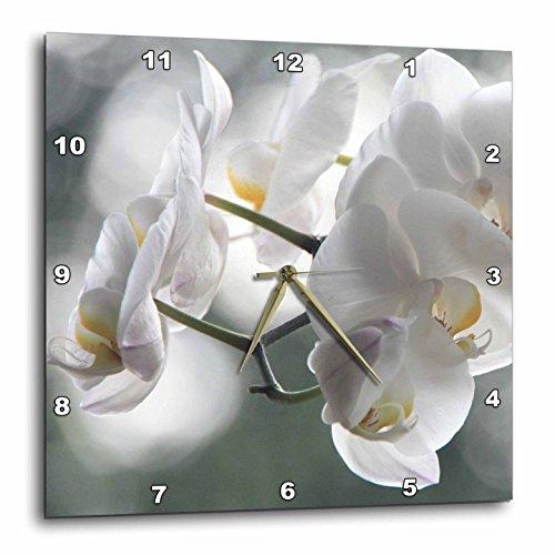 壁掛け時計 インテリア 海外モデル アメリカ 輸入 3dRose DPP_49770_3 Beautiful White Orchid Flowers Floral Photography Wall Clock, 15 by 15