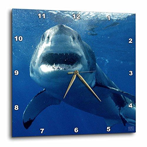 壁掛け時計 インテリア 海外モデル アメリカ 輸入 3dRose LLC DPP_10584_3 Wall Clock, 15 by 15-Inch, Great White Shark壁掛け時計 インテリア 海外モデル アメリカ 輸入