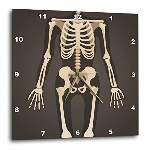 壁掛け時計 インテリア 海外モデル アメリカ 輸入 3dRose TNMGraphics Medicine - Headless Xray Skeleton - 15x15 Wall Clock (dpp_286309_3)壁掛け時計 インテリア 海外モデル アメリカ 輸入