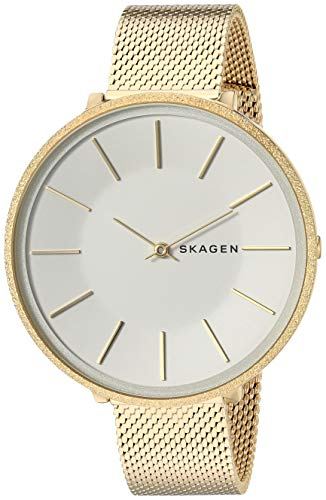 スカーゲン 腕時計 レディース Skagen Women's Karolina Analog-Quartz Stainless-Steel-Plated Strap, Gold, 14 Casual Watch (Model: SKW2722)スカーゲン 腕時計 レディース