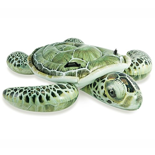 フロート プール 水遊び 浮き輪 Intex Realistic Print Sea Turtle Inflatable, 75