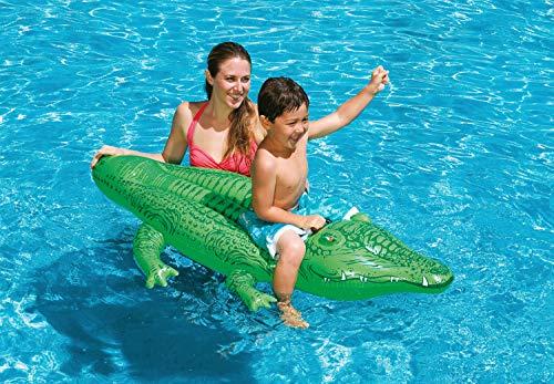 フロート プール 水遊び 浮き輪 Intex Childrens Large Inflatable Ride On Lil Gator 1.68m Swimming Pool Funフロート プール 水遊び 浮き輪