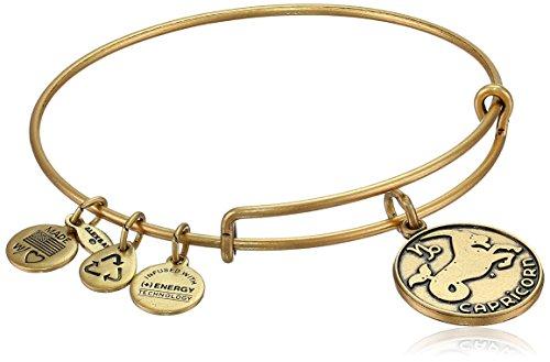 アレックスアンドアニ アメリカ アクセサリー ブランド かわいい 【送料無料】Alex and Ani Capricorn II Expandable Rafaelian Gold-Tone Wire Bangle Bracelet, 7.25