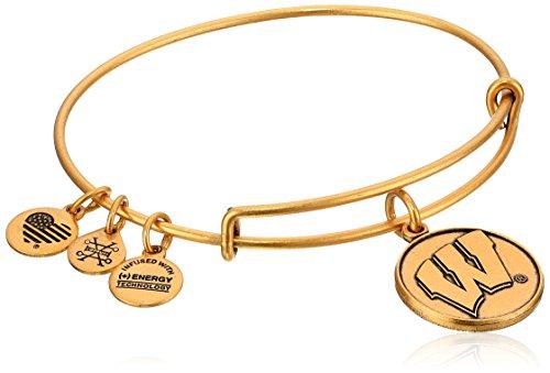 アレックスアンドアニ アメリカ アクセサリー ブランド かわいい 【送料無料】Alex and Ani University of Wisconsin Rafaelian Gold Bangle Braceletアレックスアンドアニ アメリカ アクセサリー ブランド かわいい