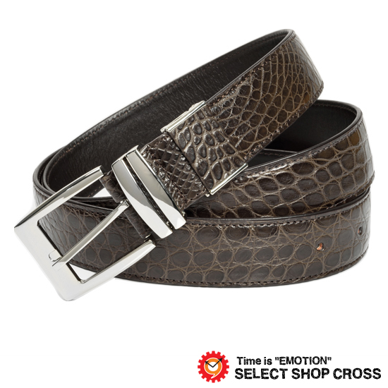 ec0561a5bc8b 高級天然皮革 メンズ レザーベルト ワニ革 クロコダイル 35mm Crocodile Dark Brown ダークブラウン  CJN0006CRNEMT(JNB-0006CR-NE)