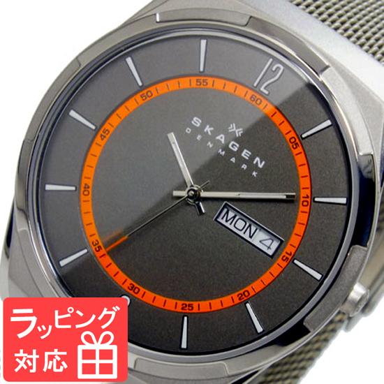 【3年保証】 スカーゲン メンズ レディース ユニセックス 腕時計 SKAGEN 時計 スカーゲン 時計 SKAGEN 腕時計 人気 クオーツ SKW6007 グレー スカーゲン レディース