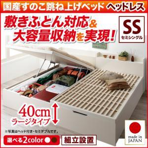 組立設置 セミシングル 敷ふとん対応&大容量収納を実現 縦開き 国産すのこ跳ね上げベッド Begleiter ベグレイター 縦開き ヘッドレス セミシングル 組立設置 深さラージ, LANCE OF KAIN:ea20532d --- officewill.xsrv.jp