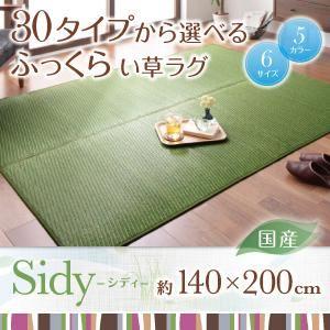 ラグマット 140×200cm【Sidy】ブラウン 30タイプから選べる国産ふっくらい草ラグ【Sidy】シディ【代引不可】
