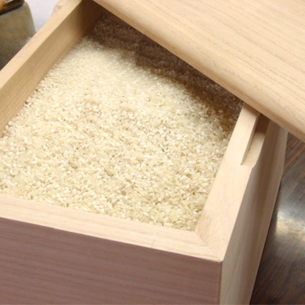 泉州 留河 桐の米びつ 無地30kg