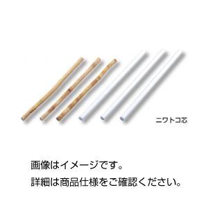 (まとめ)ニワトコ芯(ピス)10本組【×3セット】