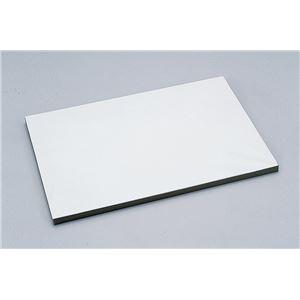 (まとめ)アーテック 紙張りパネル B3 【×10セット】